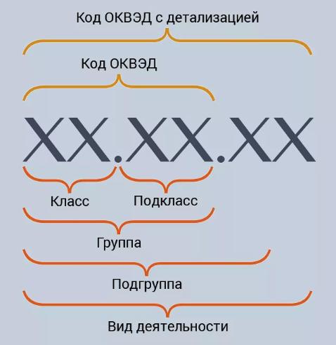 Схема структуры кодов ОКВЭД