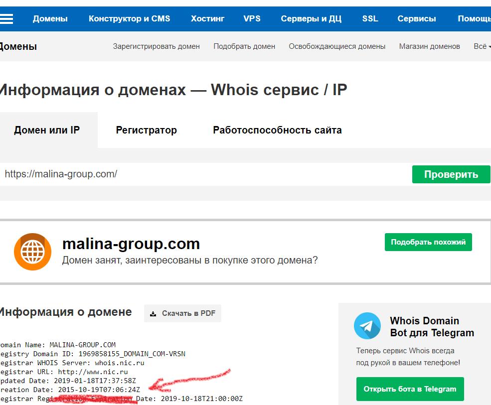 Смотрим дату регистрации домена