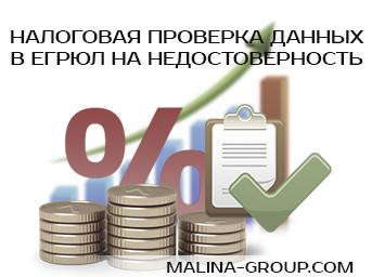 Проверка данных в ЕГРЮЛ налоговыми органами