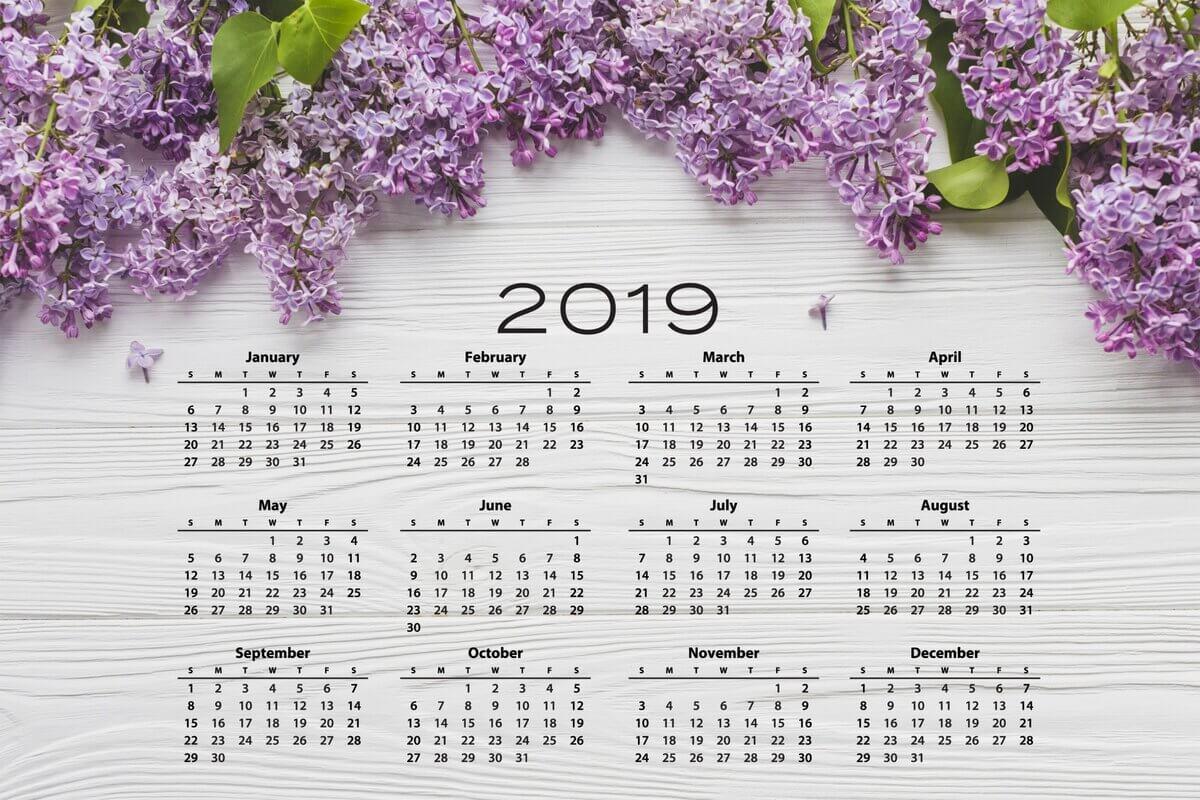 Рабочие и праздничные дни в 2019 году