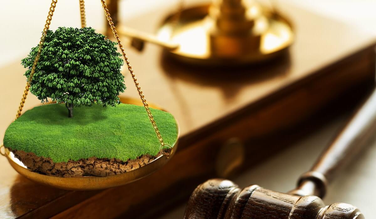 Особенности земельного права